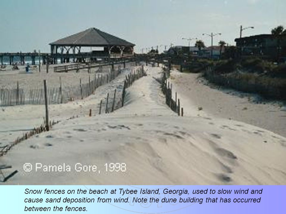 Snow fences on the beach at Tybee Island, Georgia, used to slow wind and cause sand deposition from wind.