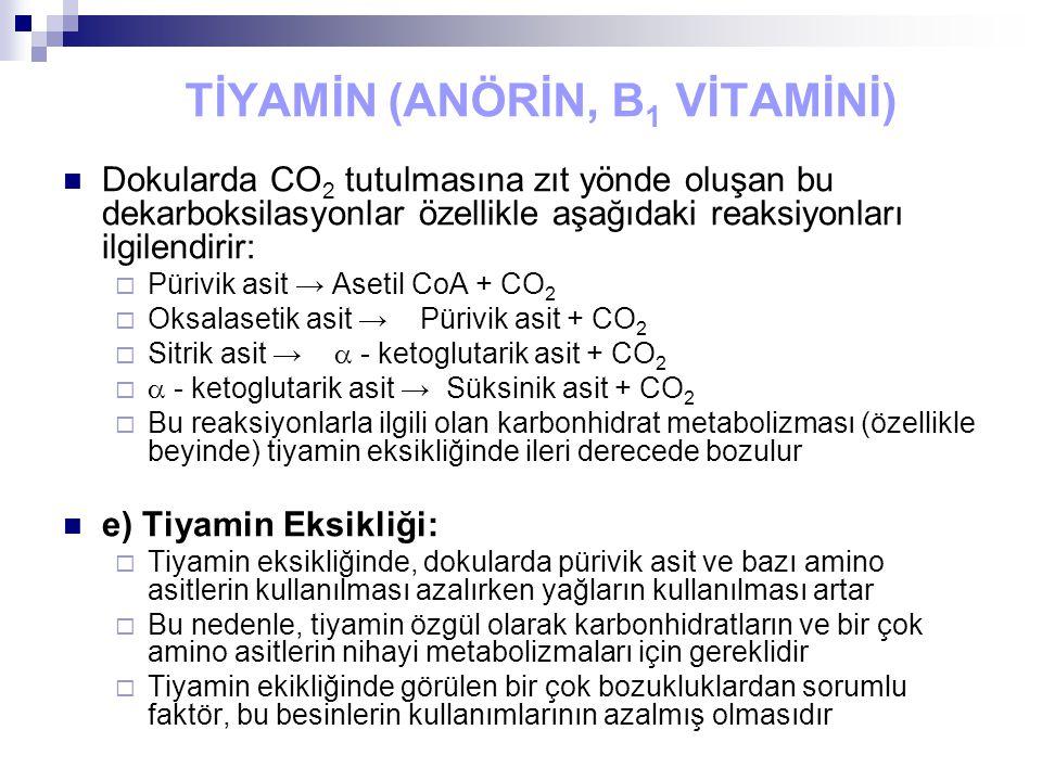 TİYAMİN (ANÖRİN, B 1 VİTAMİNİ) Dokularda CO 2 tutulmasına zıt yönde oluşan bu dekarboksilasyonlar özellikle aşağıdaki reaksiyonları ilgilendirir:  Pürivik asit → Asetil CoA + CO 2  Oksalasetik asit → Pürivik asit + CO 2  Sitrik asit →  - ketoglutarik asit + CO 2   - ketoglutarik asit → Süksinik asit + CO 2  Bu reaksiyonlarla ilgili olan karbonhidrat metabolizması (özellikle beyinde) tiyamin eksikliğinde ileri derecede bozulur e) Tiyamin Eksikliği:  Tiyamin eksikliğinde, dokularda pürivik asit ve bazı amino asitlerin kullanılması azalırken yağların kullanılması artar  Bu nedenle, tiyamin özgül olarak karbonhidratların ve bir çok amino asitlerin nihayi metabolizmaları için gereklidir  Tiyamin ekikliğinde görülen bir çok bozukluklardan sorumlu faktör, bu besinlerin kullanımlarının azalmış olmasıdır