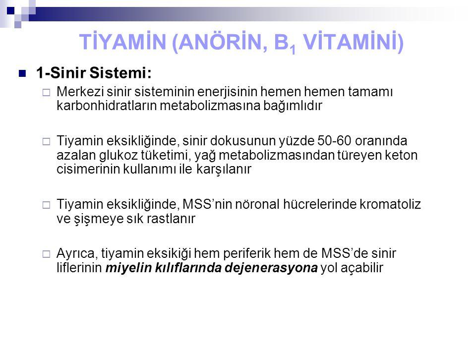 TİYAMİN (ANÖRİN, B 1 VİTAMİNİ) 1-Sinir Sistemi:  Merkezi sinir sisteminin enerjisinin hemen hemen tamamı karbonhidratların metabolizmasına bağımlıdır