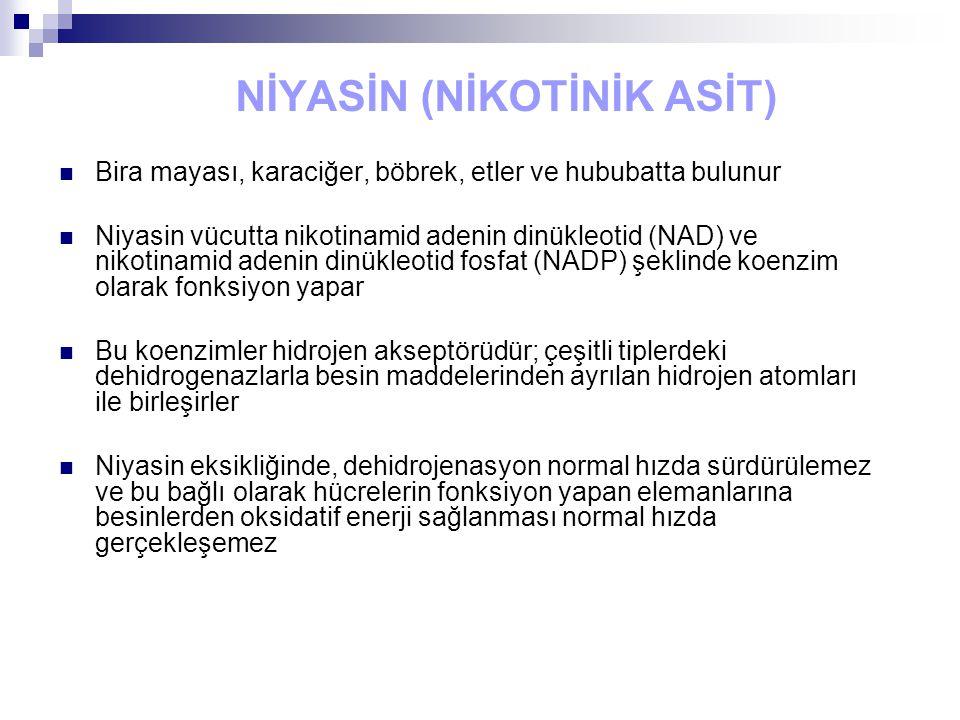 NİYASİN (NİKOTİNİK ASİT) Bira mayası, karaciğer, böbrek, etler ve hububatta bulunur Niyasin vücutta nikotinamid adenin dinükleotid (NAD) ve nikotinamid adenin dinükleotid fosfat (NADP) şeklinde koenzim olarak fonksiyon yapar Bu koenzimler hidrojen akseptörüdür; çeşitli tiplerdeki dehidrogenazlarla besin maddelerinden ayrılan hidrojen atomları ile birleşirler Niyasin eksikliğinde, dehidrojenasyon normal hızda sürdürülemez ve bu bağlı olarak hücrelerin fonksiyon yapan elemanlarına besinlerden oksidatif enerji sağlanması normal hızda gerçekleşemez