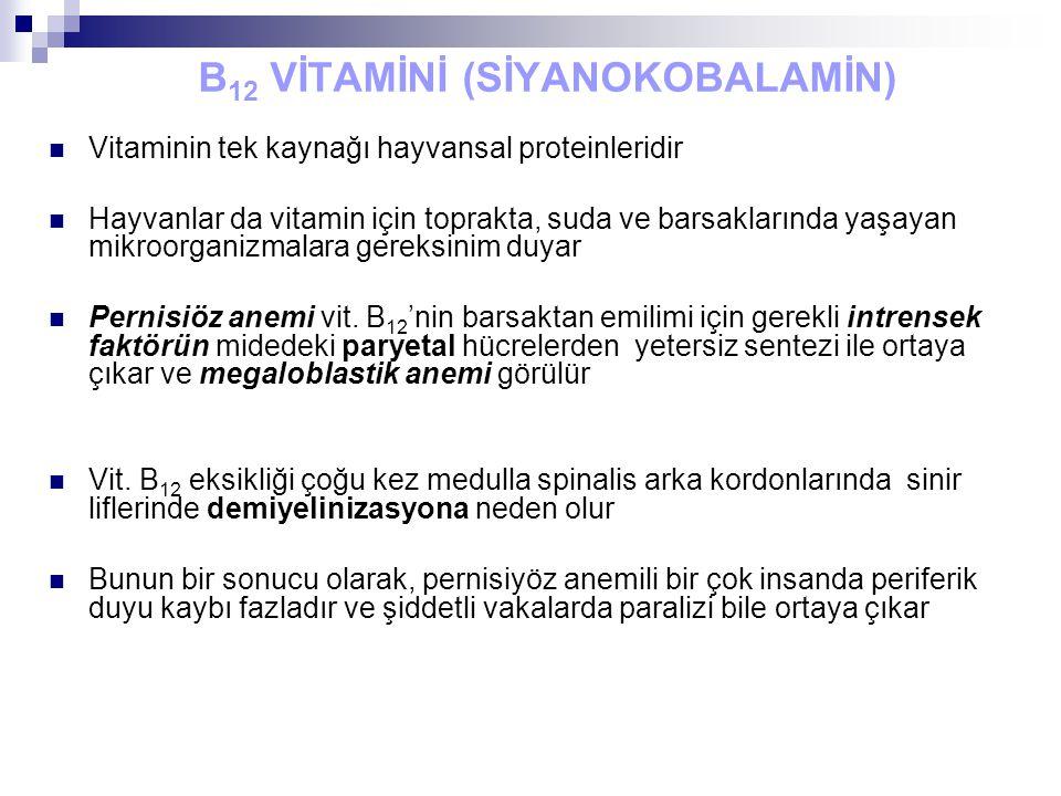 B 12 VİTAMİNİ (SİYANOKOBALAMİN) Vitaminin tek kaynağı hayvansal proteinleridir Hayvanlar da vitamin için toprakta, suda ve barsaklarında yaşayan mikroorganizmalara gereksinim duyar Pernisiöz anemi vit.