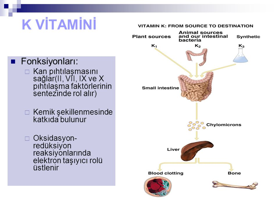 K VİTAMİNİ Fonksiyonları:  Kan pıhtılaşmasını sağlar(II, VII, IX ve X pıhtılaşma faktörlerinin sentezinde rol alır)  Kemik şekillenmesinde katkıda bulunur  Oksidasyon- redüksiyon reaksiyonlarında elektron taşıyıcı rolü üstlenir