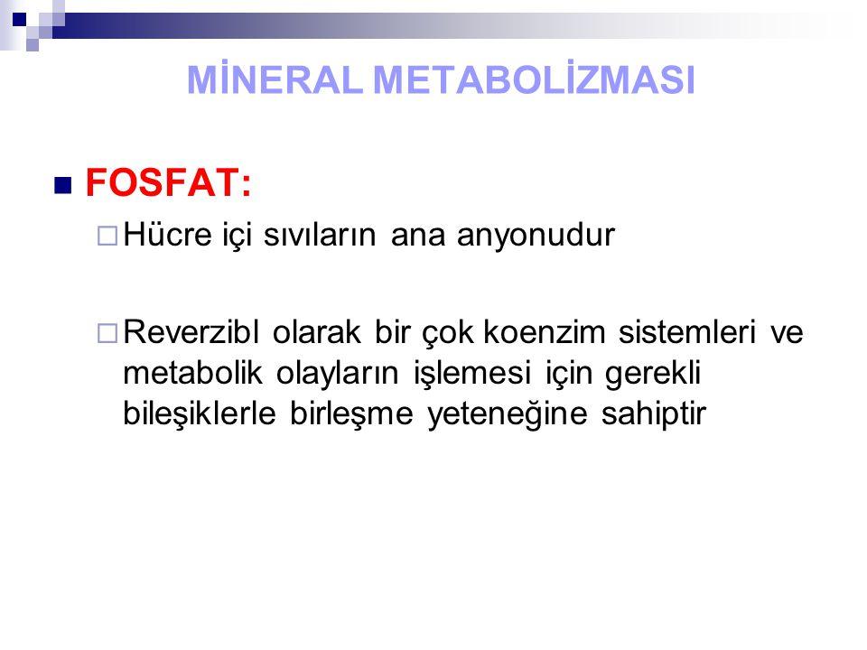 MİNERAL METABOLİZMASI FOSFAT:  Hücre içi sıvıların ana anyonudur  Reverzibl olarak bir çok koenzim sistemleri ve metabolik olayların işlemesi için g
