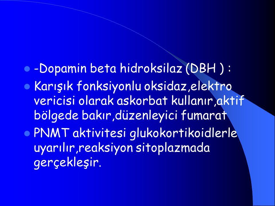 -Dopamin beta hidroksilaz (DBH ) : Karışık fonksiyonlu oksidaz,elektro vericisi olarak askorbat kullanır,aktif bölgede bakır,düzenleyici fumarat PNMT aktivitesi glukokortikoidlerle uyarılır,reaksiyon sitoplazmada gerçekleşir.