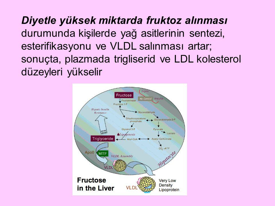 Diyetle yüksek miktarda fruktoz alınması durumunda kişilerde yağ asitlerinin sentezi, esterifikasyonu ve VLDL salınması artar; sonuçta, plazmada trigl