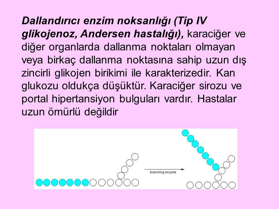 Dallandırıcı enzim noksanlığı (Tip IV glikojenoz, Andersen hastalığı), karaciğer ve diğer organlarda dallanma noktaları olmayan veya birkaç dallanma n