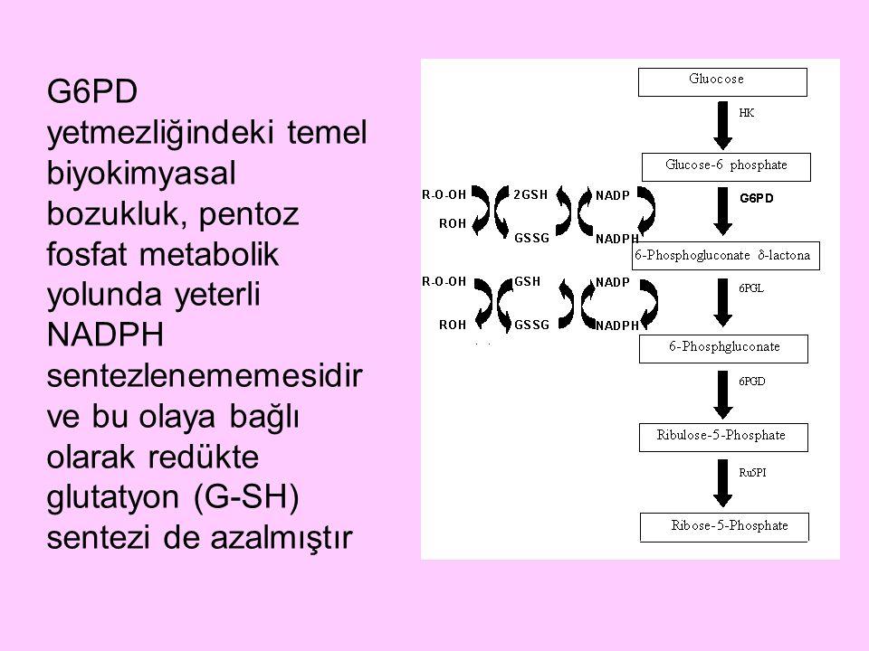 G6PD yetmezliğindeki temel biyokimyasal bozukluk, pentoz fosfat metabolik yolunda yeterli NADPH sentezlenememesidir ve bu olaya bağlı olarak redükte g