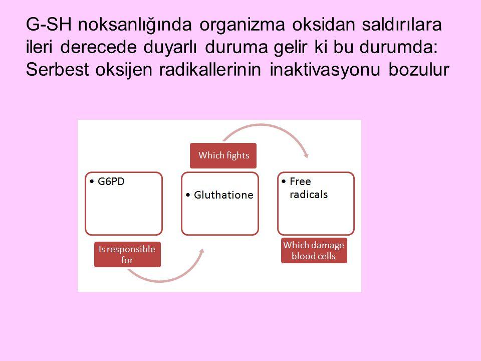 G-SH noksanlığında organizma oksidan saldırılara ileri derecede duyarlı duruma gelir ki bu durumda: Serbest oksijen radikallerinin inaktivasyonu bozul