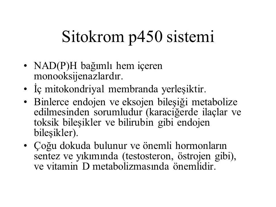 Sitokrom p450 sistemi NAD(P)H bağımlı hem içeren monooksijenazlardır. İç mitokondriyal membranda yerleşiktir. Binlerce endojen ve eksojen bileşiği met