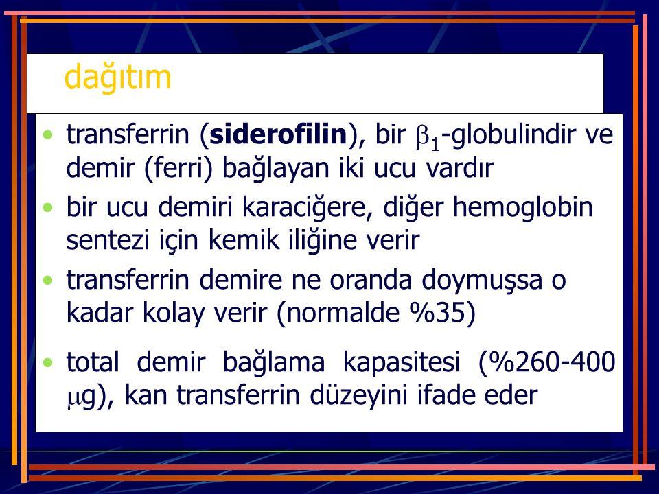 dağıtım transferrin (siderofilin), bir  1 -globulindir ve demir (ferri) bağlayan iki ucu vardır bir ucu demiri karaciğere, diğer hemoglobin sentezi i