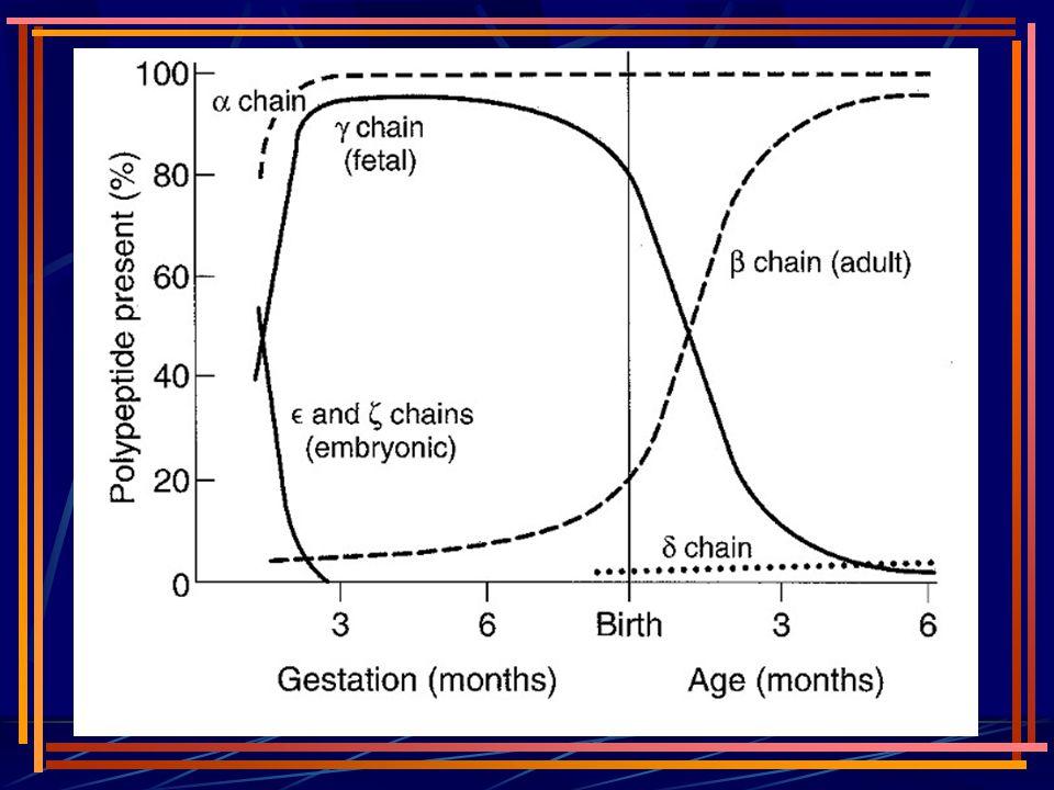 anormal hemoglobinler Hem sentezi normaldir; problem globindedir.