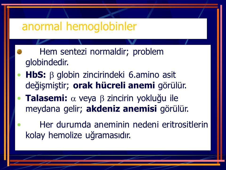 anormal hemoglobinler Hem sentezi normaldir; problem globindedir. HbS:  globin zincirindeki 6.amino asit değişmiştir; orak hücreli anemi görülür. Tal