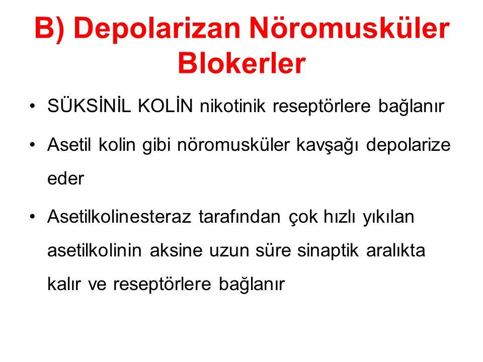 B) Depolarizan Nöromusküler Blokerler SÜKSİNİL KOLİN nikotinik reseptörlere bağlanır Asetil kolin gibi nöromusküler kavşağı depolarize eder Asetilkoli