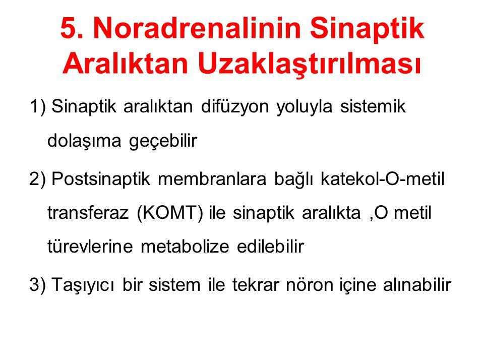 5. Noradrenalinin Sinaptik Aralıktan Uzaklaştırılması 1) Sinaptik aralıktan difüzyon yoluyla sistemik dolaşıma geçebilir 2) Postsinaptik membranlara b