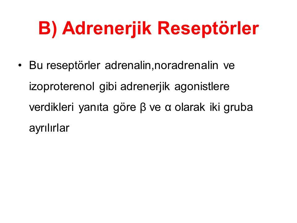 B) Adrenerjik Reseptörler Bu reseptörler adrenalin,noradrenalin ve izoproterenol gibi adrenerjik agonistlere verdikleri yanıta göre β ve α olarak iki gruba ayrılırlar