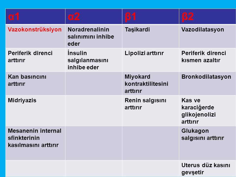 α1α1α2α2β1β1β2β2 VazokonstrüksiyonNoradrenalinin salınımını inhibe eder TaşikardiVazodilatasyon Periferik direnci arttırır İnsulin salgılanmasını inhibe eder Lipolizi arttırırPeriferik direnci kısmen azaltır Kan basıncını arttırır Miyokard kontraktilitesini arttırır Bronkodilatasyon MidriyazisRenin salgısını arttırır Kas ve karaciğerde glikojenolizi arttırır Mesanenin internal sfinkterinin kasılmasını arttırır Glukagon salgısını arttırır Uterus düz kasını gevşetir