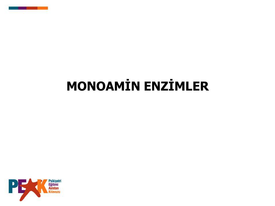MONOAMİN ENZİMLER