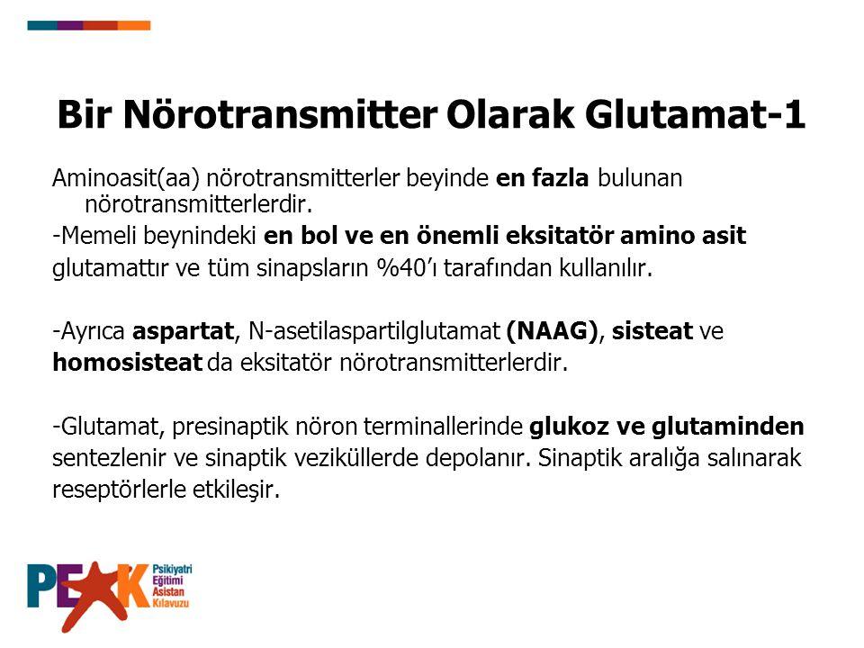 Bir Nörotransmitter Olarak Glutamat-1 Aminoasit(aa) nörotransmitterler beyinde en fazla bulunan nörotransmitterlerdir. -Memeli beynindeki en bol ve en