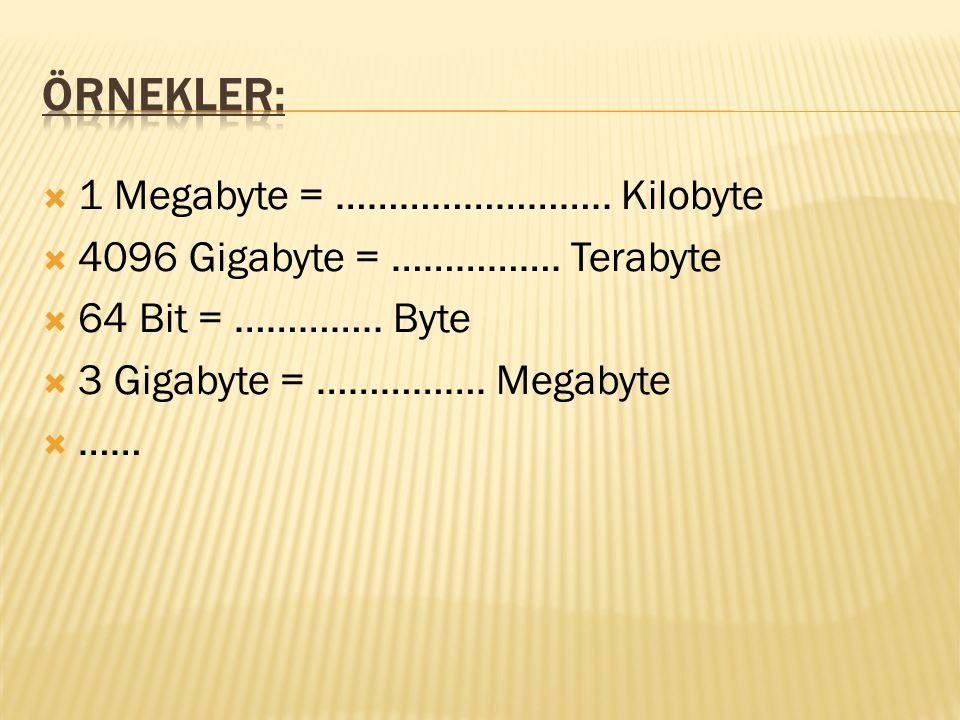  1 Megabyte = …………………….. Kilobyte  4096 Gigabyte = ……………. Terabyte  64 Bit = ………….. Byte  3 Gigabyte = ……………. Megabyte  ……