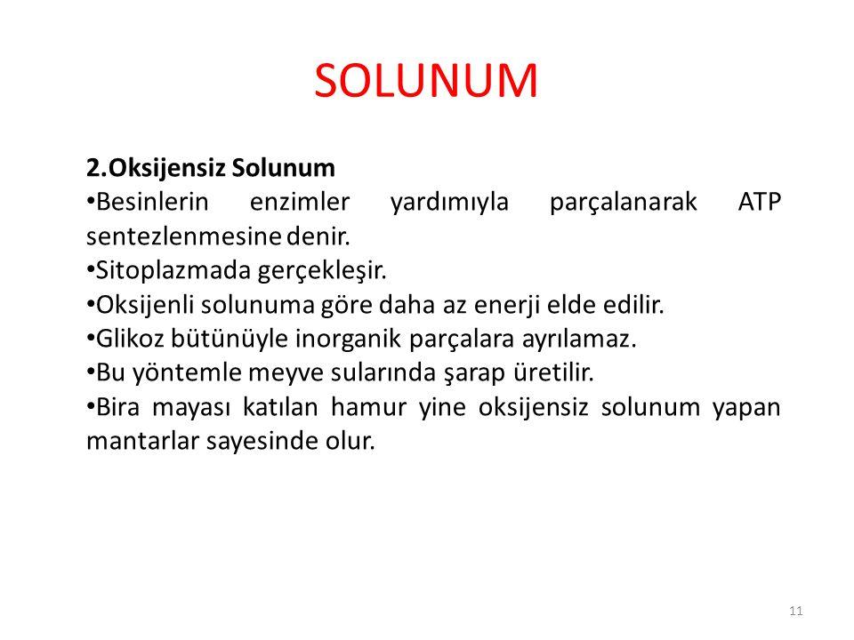 SOLUNUM 2.Oksijensiz Solunum Besinlerin enzimler yardımıyla parçalanarak ATP sentezlenmesine denir. Sitoplazmada gerçekleşir. Oksijenli solunuma göre