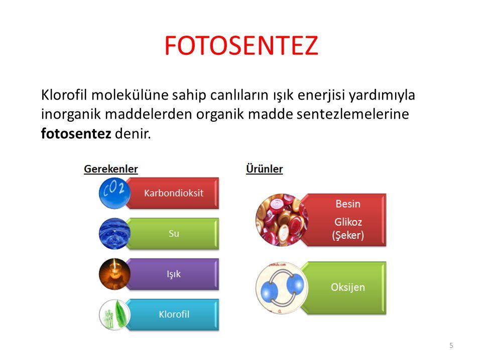 FOTOSENTEZ Klorofil molekülüne sahip canlıların ışık enerjisi yardımıyla inorganik maddelerden organik madde sentezlemelerine fotosentez denir.
