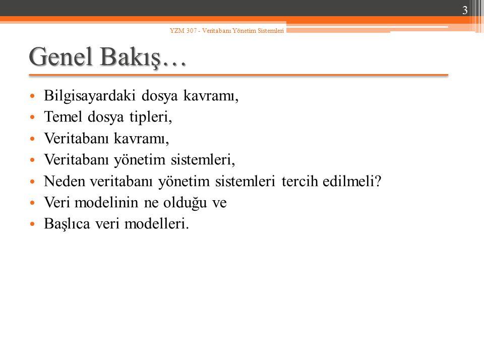 a) Veri tekrarlarını önler… Örneğin; Türkiye'deki il kodları ve isimlerinden oluşan bir dosya PERSONEL alt sisteminde kullanılabilir.