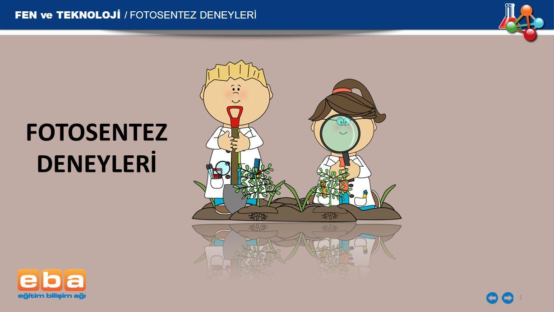 FEN ve TEKNOLOJİ / FOTOSENTEZ DENEYLERİ FOTOSENTEZ DENEYLERİ 1