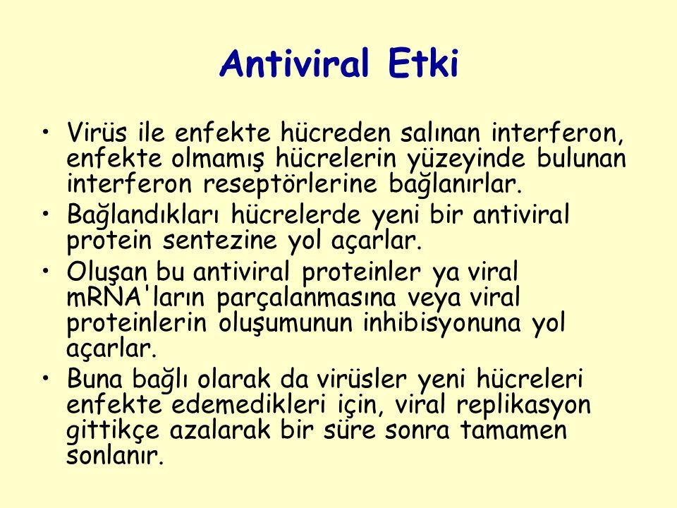 Antiviral Etki Virüs ile enfekte hücreden salınan interferon, enfekte olmamış hücrelerin yüzeyinde bulunan interferon reseptörlerine bağlanırlar.