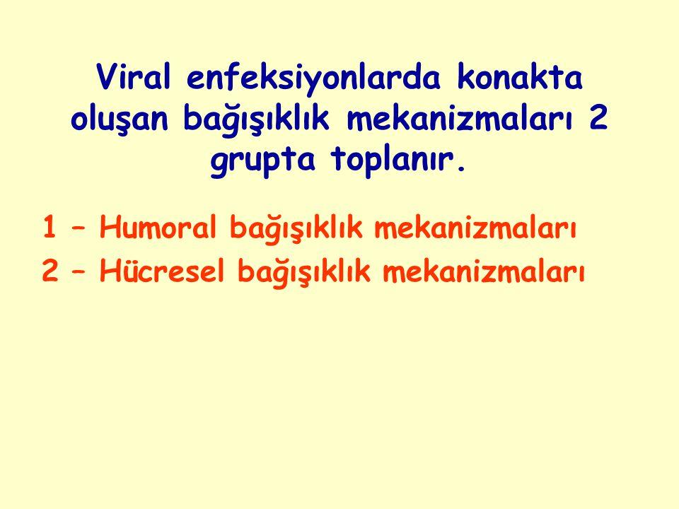 Viral enfeksiyonlarda konakta oluşan bağışıklık mekanizmaları 2 grupta toplanır.
