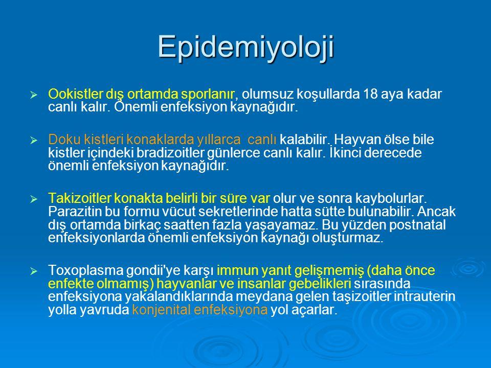 Epidemiyoloji   Ookistler dış ortamda sporlanır, olumsuz koşullarda 18 aya kadar canlı kalır. Önemli enfeksiyon kaynağıdır.   Doku kistleri konakl