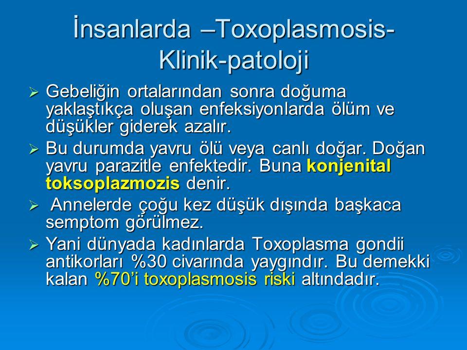 İnsanlarda –Toxoplasmosis- Klinik-patoloji  Gebeliğin ortalarından sonra doğuma yaklaştıkça oluşan enfeksiyonlarda ölüm ve düşükler giderek azalır. 