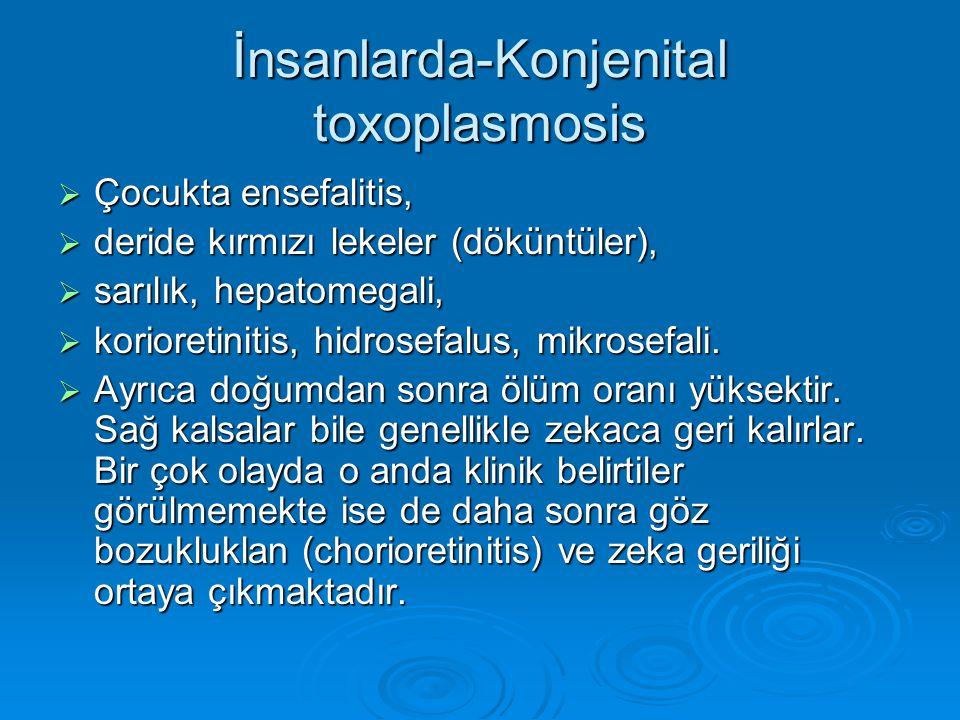 İnsanlarda-Konjenital toxoplasmosis  Çocukta ensefalitis,  deride kırmızı lekeler (döküntüler),  sarılık, hepatomegali,  korioretinitis, hidrosefa