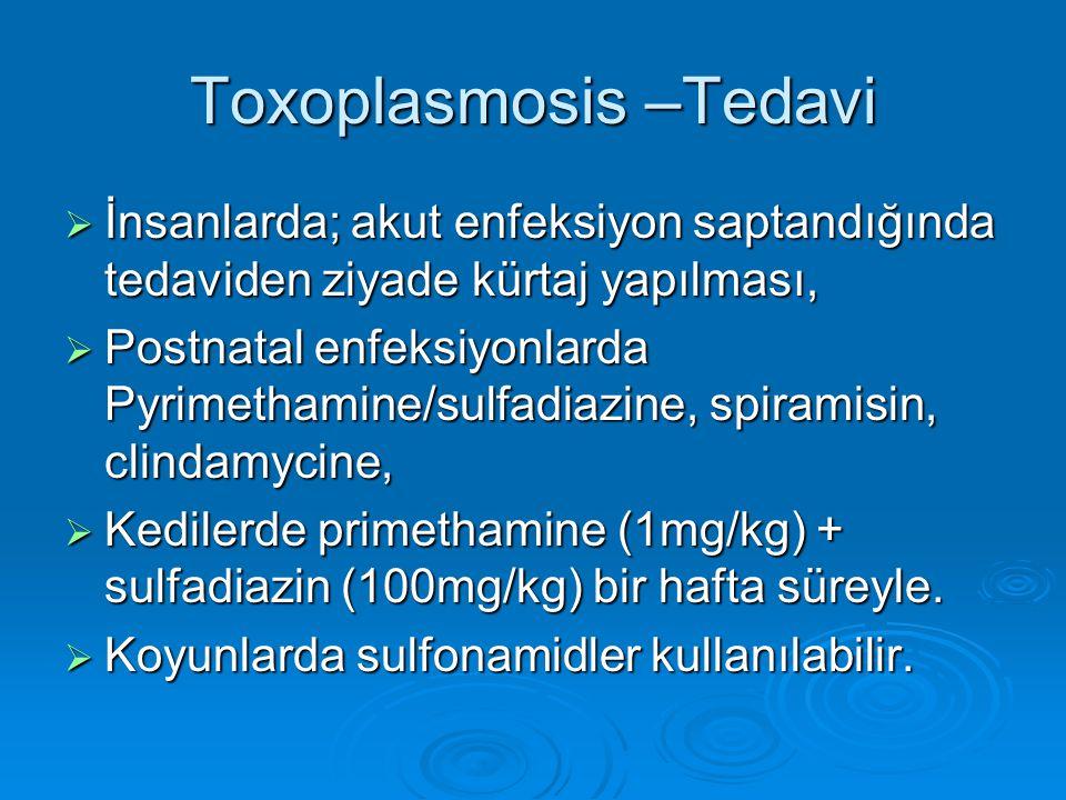 Toxoplasmosis –Tedavi  İnsanlarda; akut enfeksiyon saptandığında tedaviden ziyade kürtaj yapılması,  Postnatal enfeksiyonlarda Pyrimethamine/sulfadi