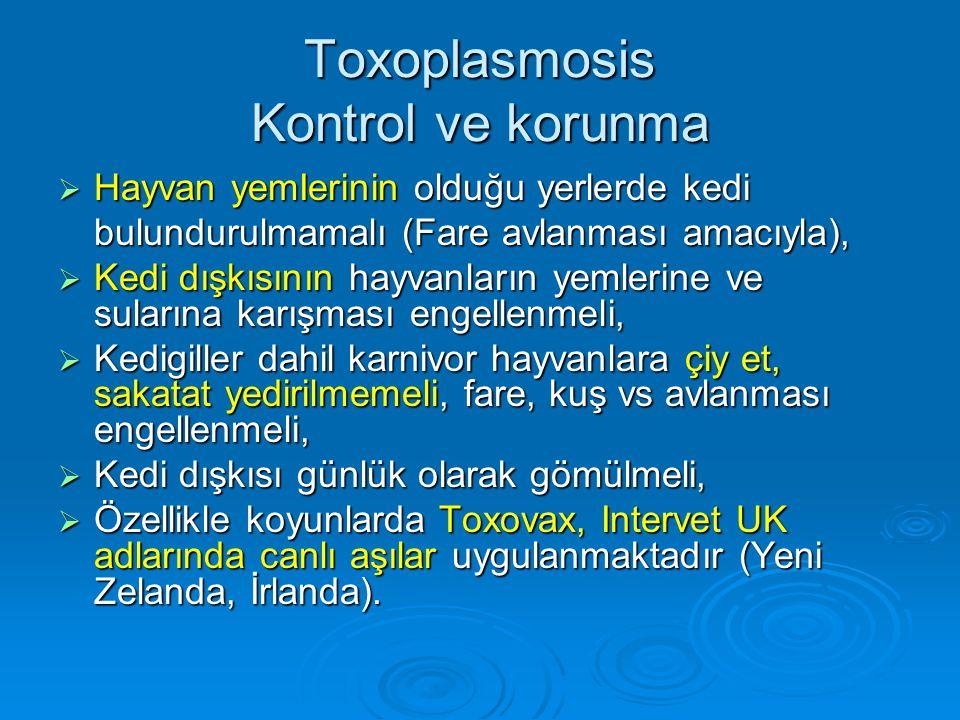 Toxoplasmosis Kontrol ve korunma  Hayvan yemIerinin olduğu yerlerde kedi bulundurulmamalı (Fare avlanması amacıyla),  Kedi dışkısının hayvanların ye