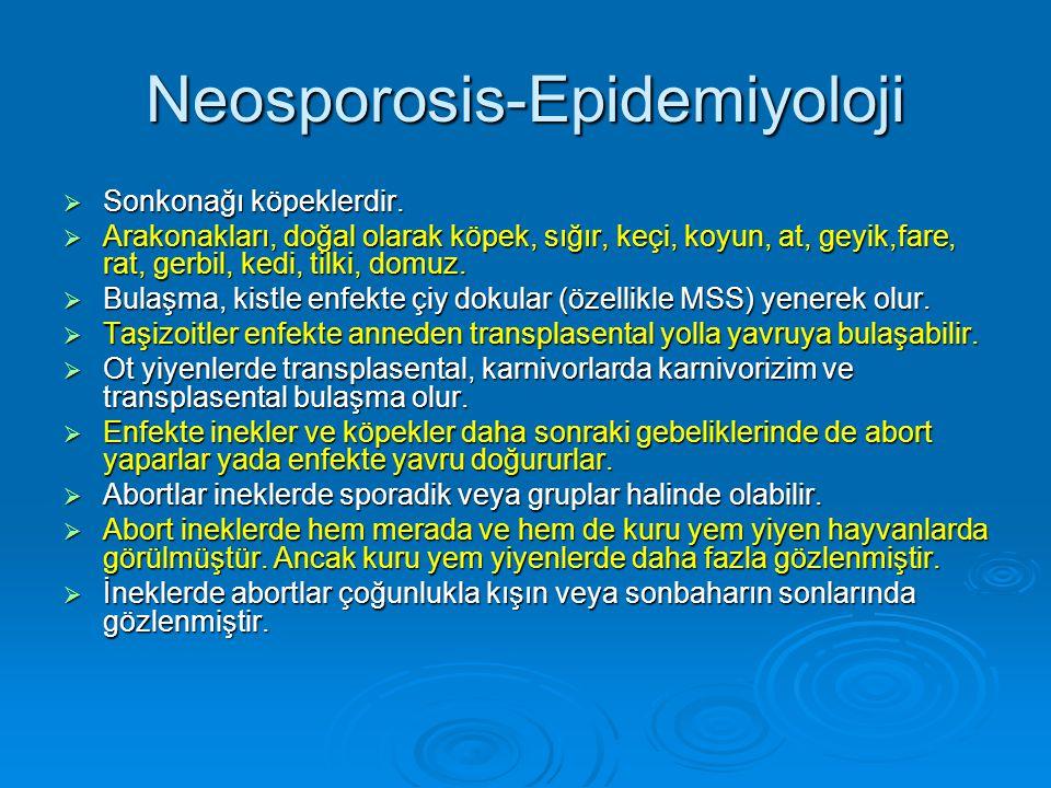 Neosporosis-Epidemiyoloji  Sonkonağı köpeklerdir.  Arakonakları, doğal olarak köpek, sığır, keçi, koyun, at, geyik,fare, rat, gerbil, kedi, tilki, d