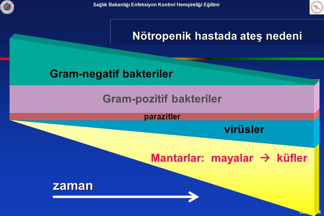 ÖU 06/2005 Sağlık Bakanlığı Enfeksiyon Kontrol Hemşireliği Eğitimi virüsler parazitler Gram-pozitif bakteriler Nötropenik hastada ateş nedeni Gram-negatif bakteriler Mantarlar: mayalar  küfler zaman zaman