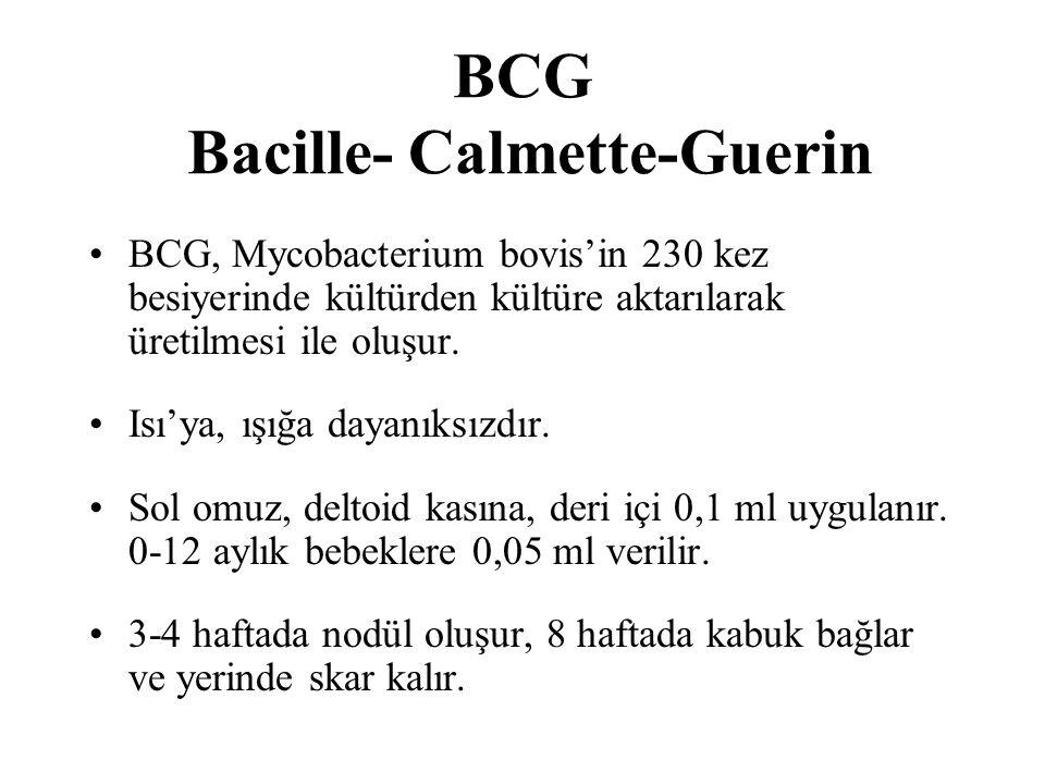 BCG Bacille- Calmette-Guerin BCG, Mycobacterium bovis'in 230 kez besiyerinde kültürden kültüre aktarılarak üretilmesi ile oluşur. Isı'ya, ışığa dayanı