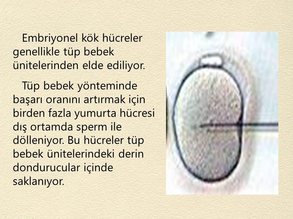 Embriyonel kök hücreler genellikle tüp bebek ünitelerinden elde ediliyor. Tüp bebek yönteminde başarı oranını artırmak için birden fazla yumurta hücre