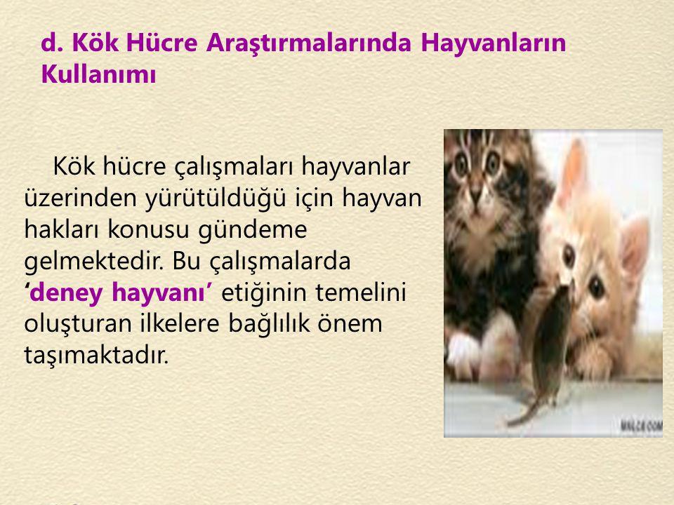 d. Kök Hücre Araştırmalarında Hayvanların Kullanımı Kök hücre çalışmaları hayvanlar üzerinden yürütüldüğü için hayvan hakları konusu gündeme gelmekted