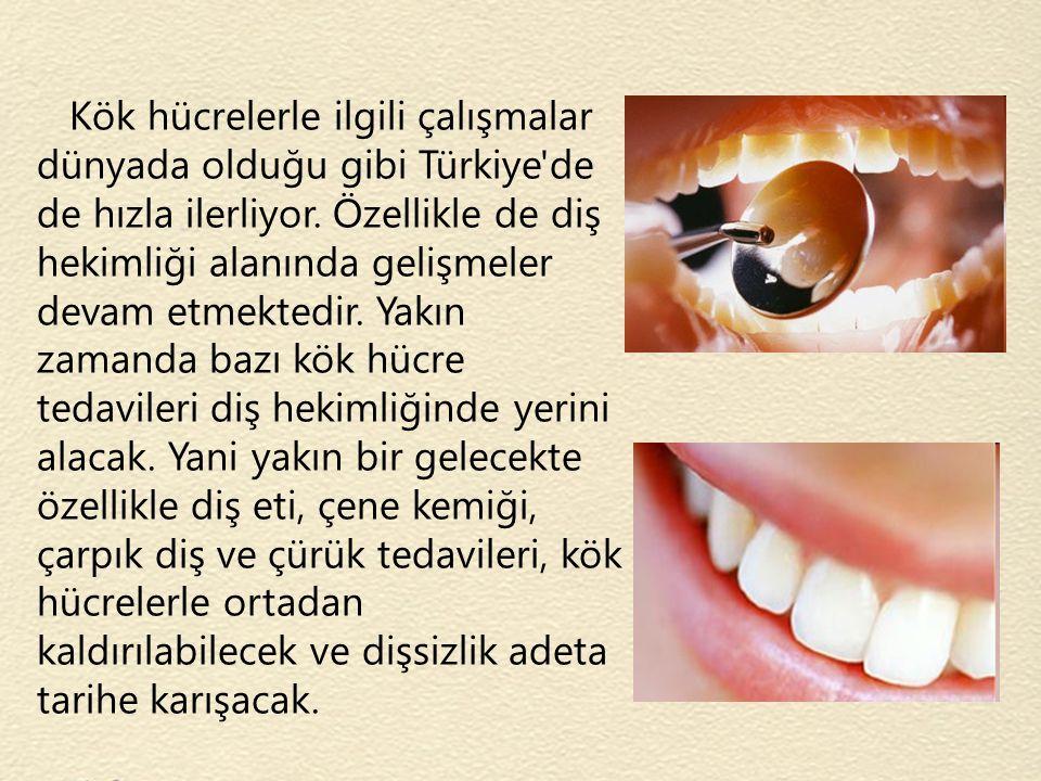 Kök hücrelerle ilgili çalışmalar dünyada olduğu gibi Türkiye'de de hızla ilerliyor. Özellikle de diş hekimliği alanında gelişmeler devam etmektedir. Y