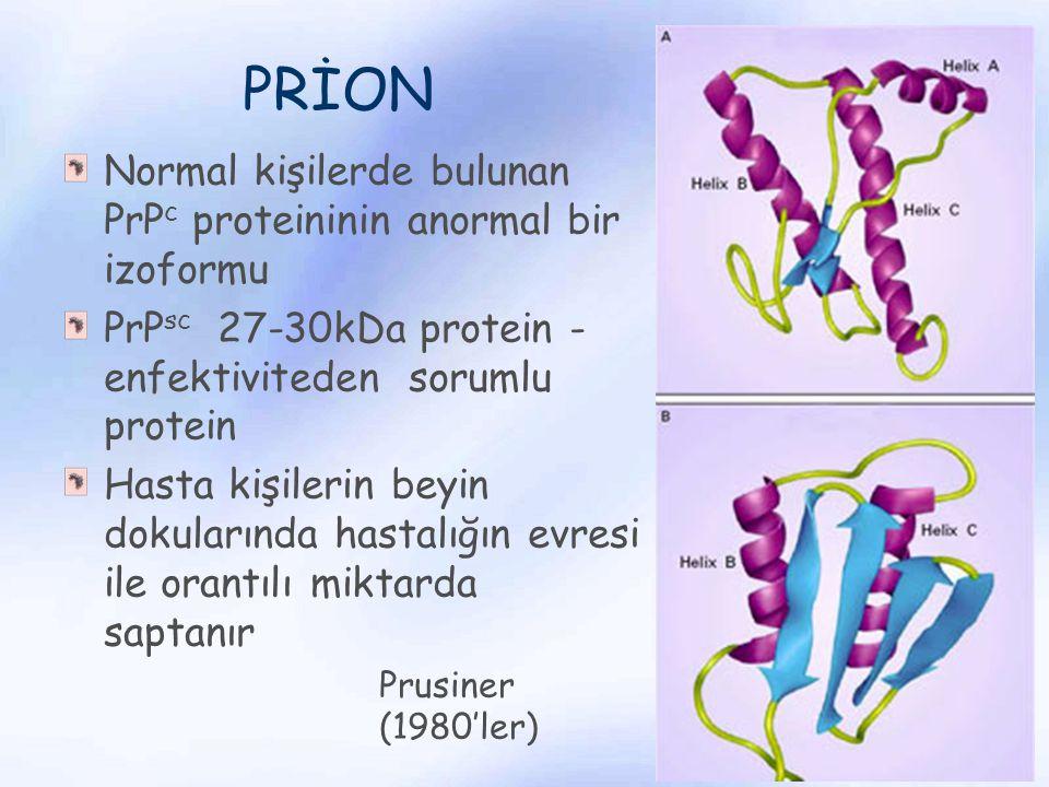 PRİON Normal kişilerde bulunan PrP c proteininin anormal bir izoformu PrP sc 27-30kDa protein - enfektiviteden sorumlu protein Hasta kişilerin beyin d
