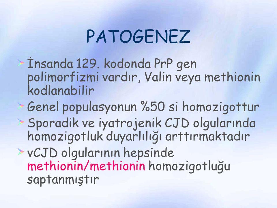 PATOGENEZ İnsanda 129. kodonda PrP gen polimorfizmi vardır, Valin veya methionin kodlanabilir Genel populasyonun %50 si homozigottur Sporadik ve iyatr
