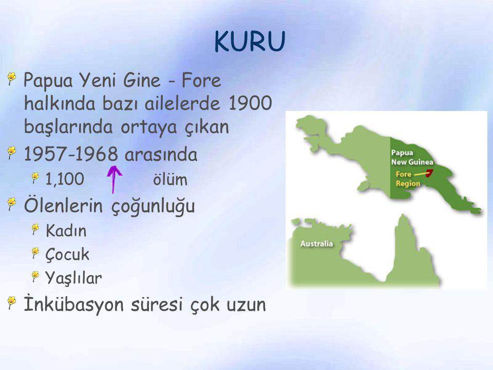 KURU Papua Yeni Gine - Fore halkında bazı ailelerde 1900 başlarında ortaya çıkan 1957-1968 arasında 1,100 ölüm Ölenlerin çoğunluğu Kadın Çocuk Yaşlıla