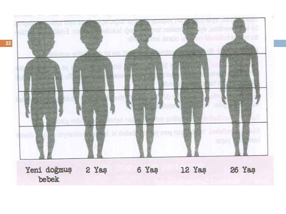 23 Bebeklik döneminde fiziksel gelişim (0-2)  Baş ve boyun kasları ayak kaslarından önce gelişir.