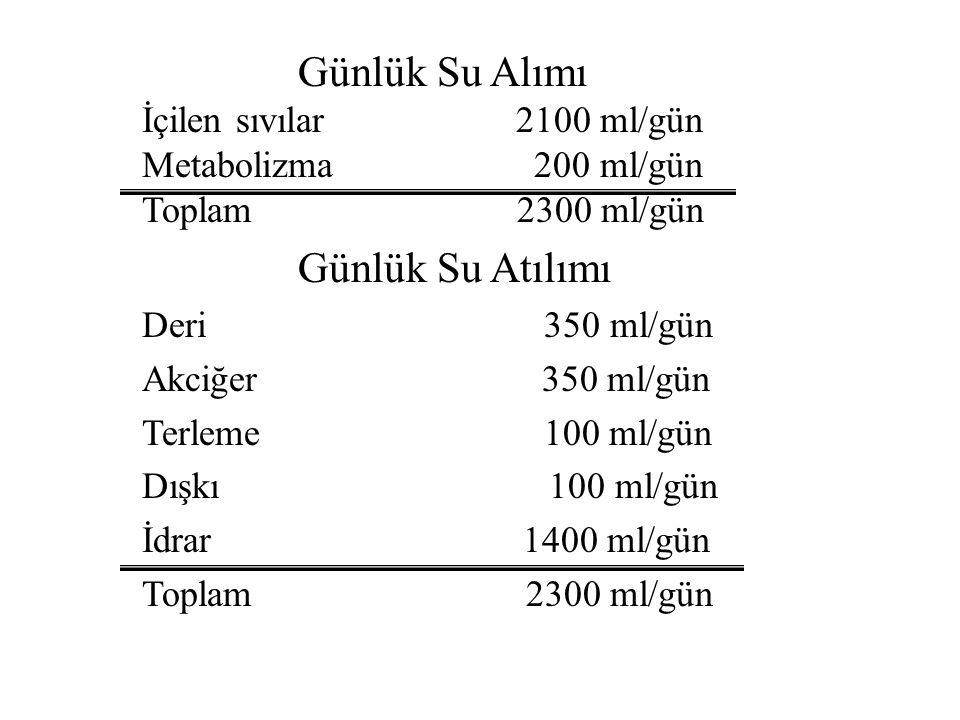 Çeşitli dokulara ve yaşa göre su oranı DokuSu % Kan83,0 Böbrek82,7 Kalp79,2 Akciğer79,0 Dalak75,8 Kas75,7 Beyin74,8 Deri72,0 Karaciğer68,3 Kemik31,0 Y