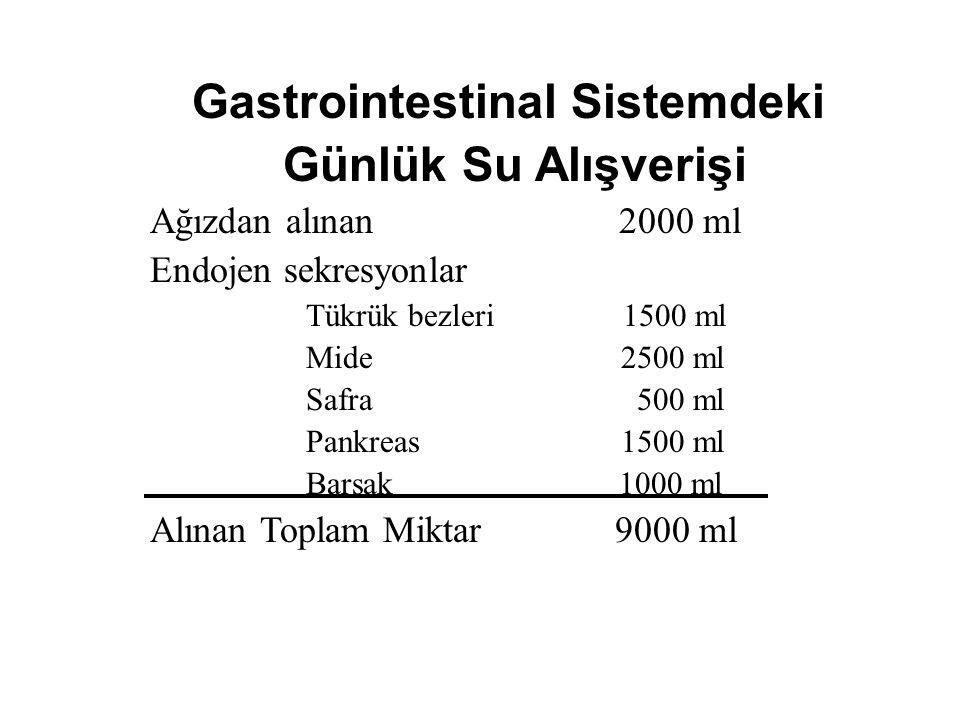 Günlük Su Alımı İçilen sıvılar 2100 ml/gün Metabolizma 200 ml/gün Toplam 2300 ml/gün Günlük Su Atılımı Deri 350 ml/gün Akciğer 350 ml/gün Terleme 100