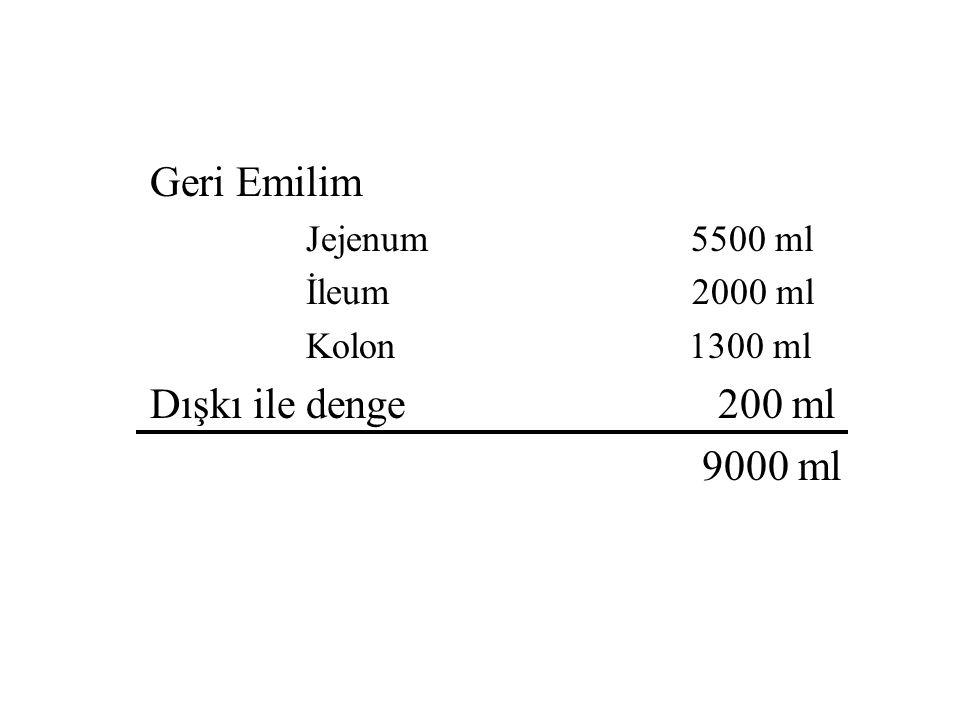 Gastrointestinal Sistemdeki Günlük Su Alışverişi Ağızdan alınan 2000 ml Endojen sekresyonlar Tükrük bezleri 1500 ml Mide 2500 ml Safra 500 ml Pankreas