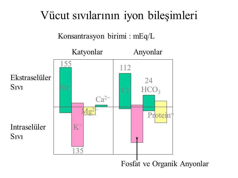 Hücre dışı Na 142 mEq/lt K 4 meq/lt Ca 5 mEq/lt Cl 103 mEq/lt glukoz 90 mg/dl aminoasit 30 mg/dl Hücre içi 14 mEq/lt 140 mEq/lt <1 mEq/lt 4 mEq/lt 5 m