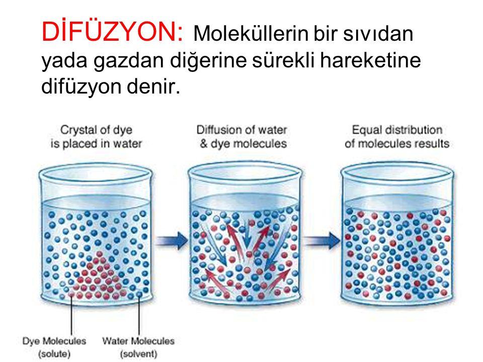 HÜCRELERİN İŞLEVSEL SİSTEMLERİ DİFÜZYON: Madde moleküllerinin rastgele hareketlerle membrandaki porlardan yada yağda eriyen maddeler için lipid matrik