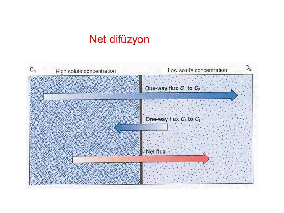 Difüzyonu Etkileyen Faktörler 1.Konsantrasyon farkı 2.Gaz yada sıvı oluşu : Gazlar daha hızlıdır. 3. Isı, Isı arttıkça difüzyon artar. 4. Moleküllerin